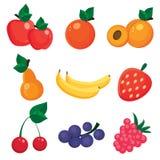 Illustration av nio olika frukter och bär Arkivfoton