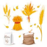 Illustration av sädesslag - vete stock illustrationer