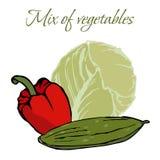 Illustration av smakliga Veggies royaltyfria bilder