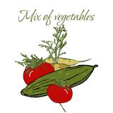 Illustration av smakliga Veggies arkivfoto