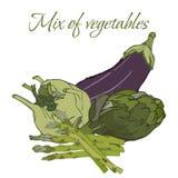Illustration av smakliga Veggies arkivfoton