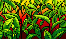 Illustration av teblad på en koloni Fotografering för Bildbyråer