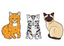 Illustration av tre färgrika sittande katter på vit bakgrund royaltyfri illustrationer