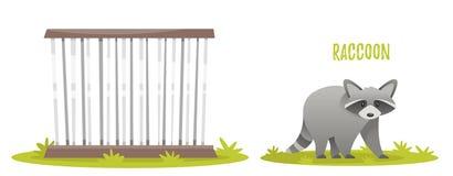 illustration av tvättbjörnen Royaltyfri Bild