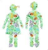 Illustration av två diagram som göras ut ur bakterier Royaltyfria Bilder