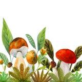 Illustration avec des champignons illustration libre de droits
