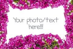 Illustration avec des fleurs Images stock