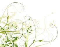Illustration avec des fleurs illustration libre de droits