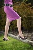 illustration avec des pattes et des chaussures Photo stock