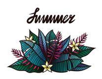 Illustration avec des plantes tropicales et des fleurs et le ` d'été de ` de lettrage ci-dessus Image stock