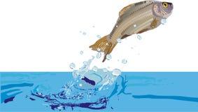 Illustration avec des poissons Photographie stock