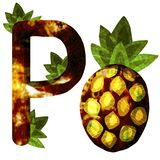 Illustration avec l'ananas photos libres de droits