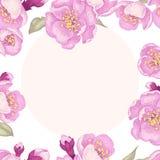 Illustration avec Sakura illustration libre de droits