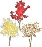 Illustration avec trois arbres lumineux de chute d'isolement sur le blanc Images stock