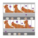 Illustration of avian influenza stock illustration