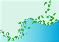 Illustration background with green. Sheet and dewdrop Royalty Free Stock Image
