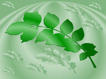 Illustration of background with leaves Royalty Free Stock Photo