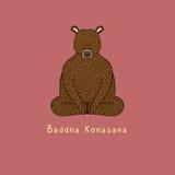 Illustration of Baddha Konasana yoga pose. Animal yoga royalty free illustration