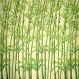 Illustration of bamboo branches. On a vintage texture background Stock Image