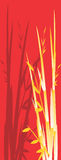 Illustration of Bamboo tree. Red banner illustration of Bamboo tree Stock Images