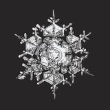 White snowflake on black background Stock Photo