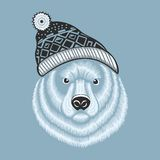 Illustration of bear hipster in knitted hat with Stock Photo