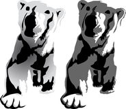 Bear. Illustration of a bear. Walking in front of white background royalty free illustration