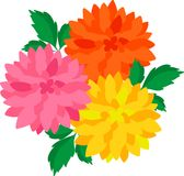 The illustration of flower Royalty Free Stock Photos