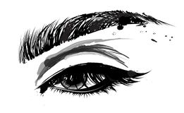 Illustration of eye makeup and brow on white background Royalty Free Stock Photos