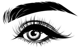 Illustration of eye makeup and brow on white background Royalty Free Stock Photography
