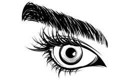 Illustration of eye makeup and brow on white background Stock Photo