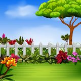 The beautiful garden with the fance and flowers stock illustration