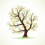 Illustration of beautiful spring tree Royalty Free Stock Photos