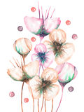 Illustration with the beautiful watercolor abstract flowers, hand-drawn on a white background Stock Photos