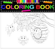 Bee coloring book. Illustration of bee coloring book Stock Photos