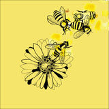 Illustration of bee and flower royalty free illustration