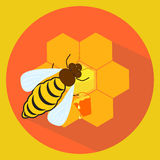 Illustration of bee and honeycombs Royalty Free Stock Photography