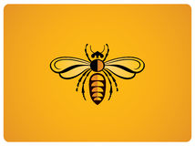 Illustration of bee royalty free illustration