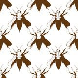 Illustration of a bee. Wild nature. A swarm of bees. Seamless pattern. Stock Photography