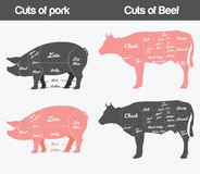 Illustration of beef, pork Cuts Chart. Set Stock Images