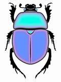 Illustration of beetle , vector draw royalty free stock photography