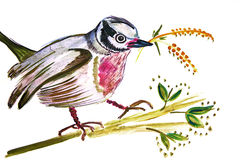 Illustration of a bird with a twig Royalty Free Stock Image
