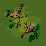 Illustration of birds on a branch, greeting card. Stock Photos