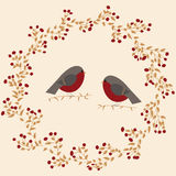 Illustration with birds Royalty Free Stock Photography