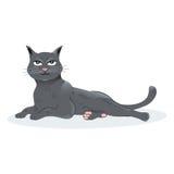 Illustration of a Black Cat sitting down. Vector illustration of a black cat sitting down Stock Photos