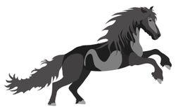 Illustration black Horse Stock Photography