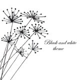 Illustration with black silhouette of fennel. Painted in watercolor on white background, postcard or decor Royalty Free Stock Images