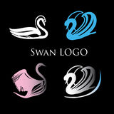 Illustration of Black Swans Logo. Design template. vector illustration