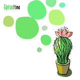 Illustration with blooming cactus Stock Photos