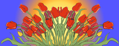 Illustration of a blooming red and yellow tulips Royalty Free Stock Photography